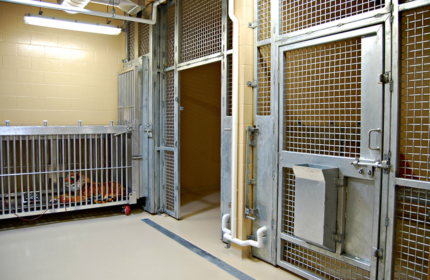 Cages inside the animal health center